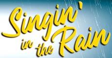 spettacolo teatro Singin' in the Rain il Musical