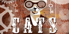 spettacolo CATS musical