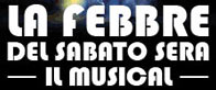 La Febbre del Sabato Sera, il Musical