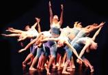 DanzaDance e Academy