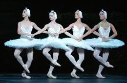 Balletto lago dei Cigni