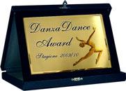 Premio DanzaDance Award