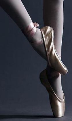 8537269412 Scarpe Punta per la Danza Classica - Danza Dance .com